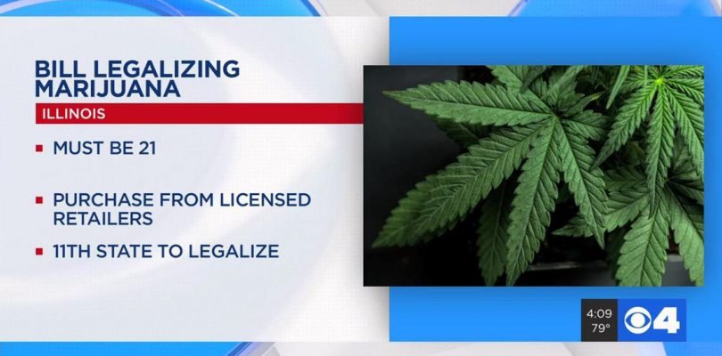 Illinois Senate approves recreational Marijuana